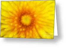 Bloom Of Dandelion Greeting Card by Michal Boubin