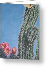 Bloomin Cactus Greeting Card by Marcia Weller-Wenbert