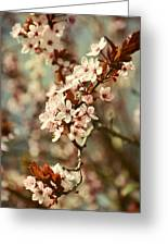 Blooming Spring Greeting Card by Gynt Art