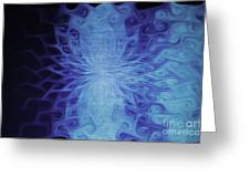 Blu Glace Greeting Card by Nasser Studios