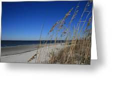 Blue Beach Greeting Card by Barbara Marie Kraus