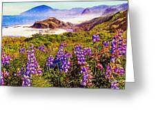 Blue Bonnets On Oregon Coastline Greeting Card by  Bob and Nadine Johnston