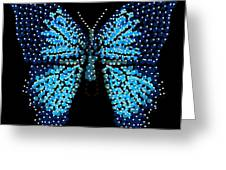 Blue Butterfly Black Background Greeting Card by R  Allen Swezey