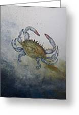 Blue Crab Print Greeting Card by Nancy Gorr