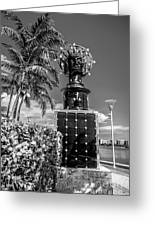 Blue Crown Statue Miami Downtown - Black And White Greeting Card by Ian Monk