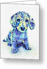 Blue Dapple Dachshund Puppy Greeting Card by Jane Schnetlage