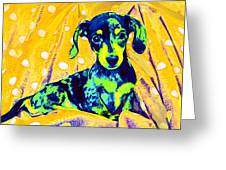 Blue Doxie Greeting Card by Jane Schnetlage
