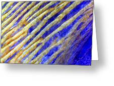 Blue Dunes Greeting Card by Adam Romanowicz