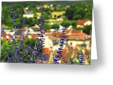 Blue Flowers And Rooftops In Sarlat Greeting Card by Elena Elisseeva