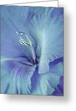 Blue Gladiolus Flower Greeting Card by Jennie Marie Schell