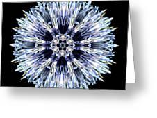Blue Globe Thistle Flower Mandala Greeting Card by David J Bookbinder