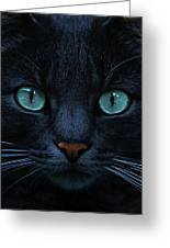 Blue Is The Night Greeting Card by Joachim G Pinkawa