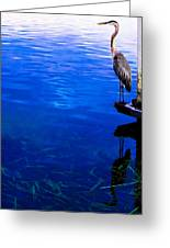 Blue Ledge Greeting Card by Christy Usilton