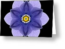 Blue Pansy I Flower Mandala Greeting Card by David J Bookbinder