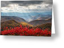 Blue Ridge Parkway Fall Foliage - The Light Greeting Card by Dave Allen