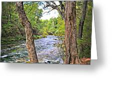 Blue Spring Branch 2 Greeting Card by Marty Koch