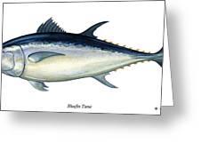 Bluefin Tuna Greeting Card By Charles Harden