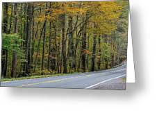 Blueridge Parkway Virginia Greeting Card by Todd Hostetter