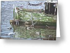 Boat Wreck With Sea Birds Greeting Card by Martin Davey