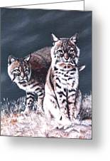 Bobcats In The Hood Greeting Card by DiDi Higginbotham