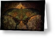 Bohemia Butterfly - Art Nouveau Greeting Card by Absinthe Art By Michelle LeAnn Scott