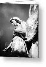 Bokeh Angel In Infrared Greeting Card by Sonja Quintero
