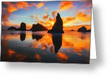 Boldly Bandon Greeting Card by Darren  White