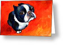 Boston Terrier Dog Painting Prints Greeting Card by Svetlana Novikova