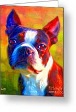 Boston Terrier Portrait Greeting Card by Iain McDonald