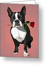 Boston Terrier With A Rose In Mouth Greeting Card by Kelly McLaughlan