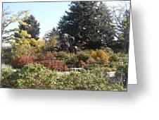 Botanical Gardens1 Greeting Card by Dejan Maksimovic