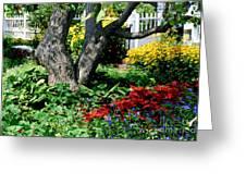 Botanical Landscape 2 Greeting Card by Eunice Miller