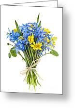 Bouquet Of Fresh Spring Flowers Greeting Card by Elena Elisseeva