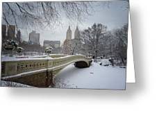 Bow Bridge Central Park in Winter  Greeting Card by Vivienne Gucwa