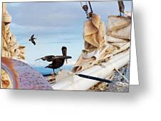 Bowsprit Pelicans Greeting Card by Deborah Smith