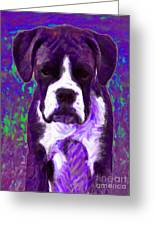 Boxer 20130126v6 Greeting Card by Wingsdomain Art and Photography