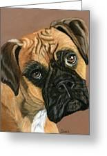 Boxer Dog Greeting Card by Sarah Dowson