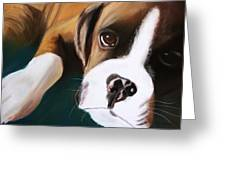 Boxer Greeting Card by Michele Turney