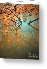 Branches And Ice Greeting Card by Tara Turner