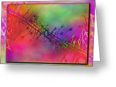 Branches In The Mist 24 Greeting Card by Tim Allen