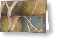 Branches Times Four Greeting Card by Bonnie Bruno