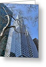 Branching Out Greeting Card by Tony Ambrosio