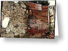 Brick And Tin Wall Greeting Card by Ellen Cannon