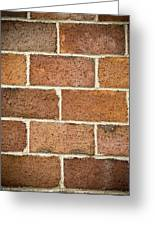 Brick Wall Greeting Card by Frank Tschakert