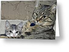 Brothers Greeting Card by Susan Leggett
