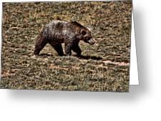 Brown Bears Greeting Card by Angel Jesus De la Fuente