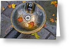 Bryant Park Fountain In Autumn Greeting Card by Gary Slawsky