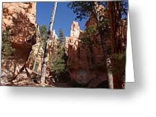 Bryce Canyon Trail Greeting Card by Michael J Bauer