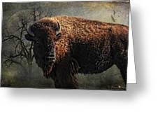 Buffalo Moon Greeting Card by Karen Slagle