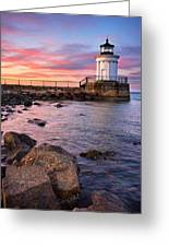Bug Light Park Greeting Card by Benjamin Williamson